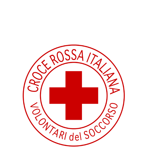 Istituzione volontaria per l'assistenza sanitaria e sociale